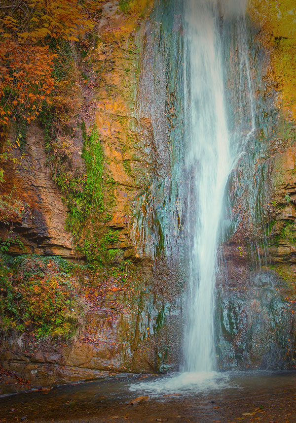 forest waterfall in automn